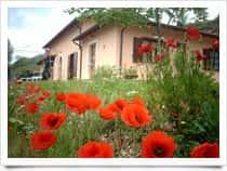 Il Vigneto - Casa Vacanze a Fontevena / Norcia (Umbria)
