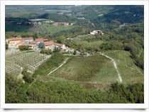 The Girapoggio - Wine Company in Verrua Savoia (Piedmont)