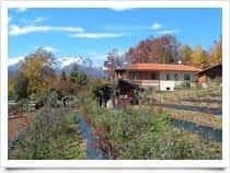 Il Ginepro - Agriturismo, a Giaveno (Piemonte)