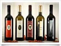 Tenuta Colle Favignano - Produzione Vino - Cantine a Velletri (Lazio)