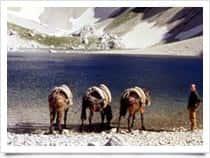 La Mulattiera - Escursioni, a Ancarano / <span class=&#39;notranslate&#39;>Norcia</span> (Umbria)
