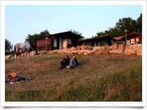Monterano Ranch - Escursioni a Cavallo & Alloggio in Chalet a Canale Monterano (Lazio)