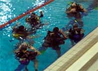 Doctorscuba Recreational Diving School - Corsi Sub, a <span class=&#39;notranslate&#39;>Bresso</span> (Lombardia)