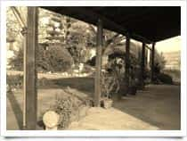 Casa Vinicola Morreale - Produzione Vino - Cantine Favara (Sicilia)
