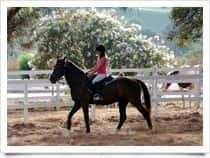 Centro Turismo Equestre ManeggioTanka -  a Villasimius (Sardegna)