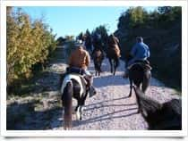 Western Passion Horse Ranch - Horseback riding in San lucky / Peglio (Tuscany)