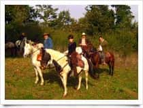 Il Sorbo - Associazione Sportiva Equestre Dilettantistica, a Campagnano di Roma (Lazio)