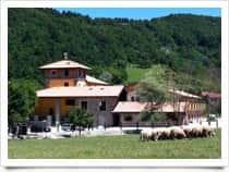 Agriturismo Cà Bella - Agriturismo in  - Dernice -  (AL) - Piemonte