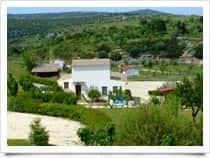 Badde Cubas - Maneggio - Escursioni a cavallo, a localit� Baddulesos / <span class=&#39;notranslate&#39;>Usini</span> (Sardegna)