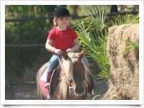 FM Team Horses - Maneggio - Escursioni a cavallo a Magazzeno / Pontecagnano Faiano (Campania)