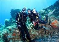A.S.D. Blunauta Divinvg Center Milazzo - Immersioni Subacquee, a Capo Milazzo / <span class=&#39;notranslate&#39;>Milazzo</span> (Sicilia)