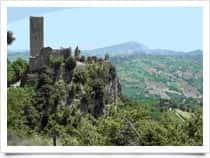 Tomassetti Pierluigi - Guida Naturalistica a Fermo (Italia)