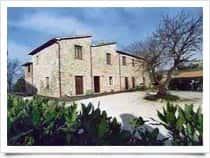 Agriturismo Barberani - Camere in agriturismo - Produzione vini, a Baschi