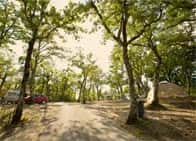 Luxor Chianti Village - Camping con piscina e ristorante in  - Castellina in Chianti -  (SI) - Toscana
