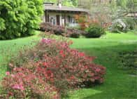 B&B Rusall's Cottage - Bed and Breakfast in  - Armeno -  NO - Piemonte
