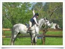 Horses VDA - Allevamento ed escursioni a cavallo, a Gressan (Valle d'Aosta)