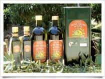 Azienda Agricola Parisi Donato - Produzione e Vendita  di Olio Extra Vergine di Oliva da Agricoltura Biologica, a Rossano / <span class=&#39;notranslate&#39;>Corigliano-Rossano</span> (Calabria)