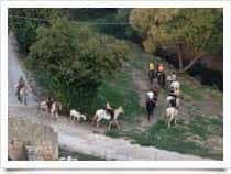 Agriturismo Fattoria del Cavaliere - Camere e ristorante agrituristico - Passeggiate a cavallo in  - Palazzolo Acreide -  (SR) - Sicilia