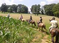 Birba Ranch ASD - Lezioni di equitazione - Passeggiate a cavallo a Triuggio (Lombardia)