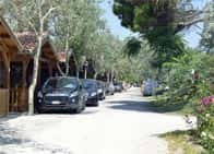 Camping La Pineta - Camping Village con bungalow, fronte spiaggia, a Porto Recanati
