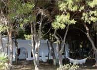 Affittacamere Pineta Favignana - Affittacamere a Favignana (Sicilia)