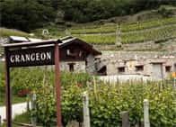 Agriturismo La Vrille - Camere e ristorante in agriturismo - Azienda vinicola a Verrayes (Valle d'Aosta)