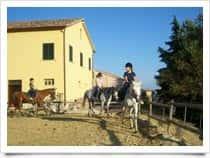 Agriturismo Ziamelia - Agriturismo & Maneggio - Sosta camper Cingoli (Emilia Romagna)