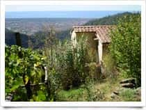 Paradise - Organic Farm and Equestrian Club in Giustagnana / Seravezza (Tuscany)