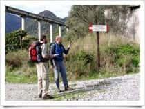 Sentiero dei Greci - Escursioni a Mammola (Italia)
