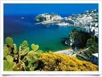 Argos - Immersioni, a San Giorgio / <span class=&#39;notranslate&#39;>Gioiosa Marea</span> (Sicilia)