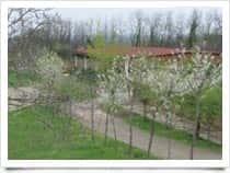 Centro ippico Visola - Maneggio a Terme di Visola / Graffignana (Lombardia)