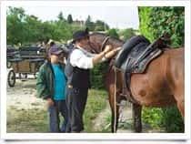Centro Sport Equestri Castel Lornano - Centro Ippico - Maneggio, a <span class=&#39;notranslate&#39;>Macerata</span> (Marche)