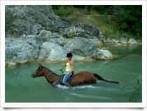 Podere Palazzone - Maneggio - Toscana on horseback a Pomarance (Italia)