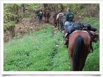 Pal&ugrave; Ranch - Maneggio - Escursioni a cavallo, a Sarone / <span class=&#39;notranslate&#39;>Caneva</span> (Friuli-Venezia Giulia)