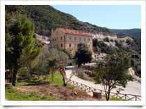 Student's Hostel Gowett - Ostello per la Gioventù in  - Campiglia Marittima -  (LI) - Toscana