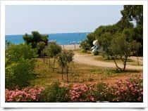 Area camper Lido Alexander - Area sosta camper a Cirella / Diamante (Calabria)
