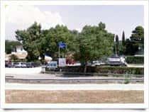 The Garden - Sosta Camper Area, at Giardino / Rosignano Marittimo (Tuscany)