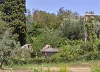 Oratorio della Madonna della Neve - rovine della chiesa, a <span class=&#39;notranslate&#39;>Rosignano Marittimo</span> (Toscana)