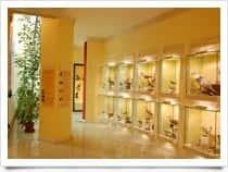 Museo Ornitologico della Sardegna a Siddi