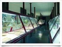 Museo Capitolare - , a <span class=&#39;notranslate&#39;>Atri</span> (Abruzzo)