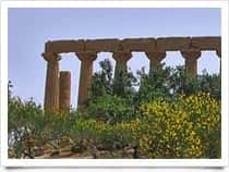 Temple of Juno - Valley of the Temples in Agrigento (Sicily)
