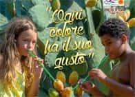 Sagra del Ficodindia dell'Etna DOP - Ogni colore ha il suo sapore a Belpasso (Sicilia)