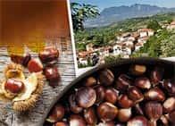 Sagra della Castagna - Festa gastronomica dedicata alla prelibata castagna irpina, a Salza Irpina (Campania)