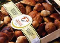 Fiera del Fungo Porcino di Borgotaro IGP