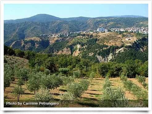 Photo di Campana - Calabria ( Italia )