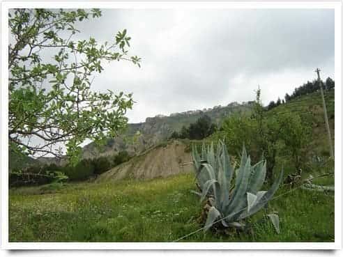 Photo di Montalbano Jonico - Basilicata ( Italia )