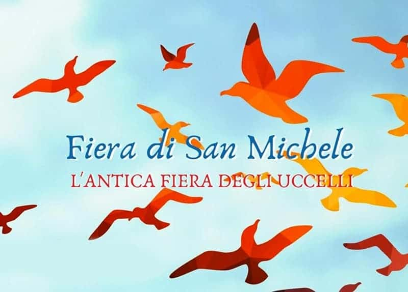 Photo di Fiera di San Michele