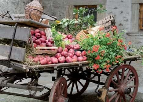Photo Sagra della mela e dell'uva