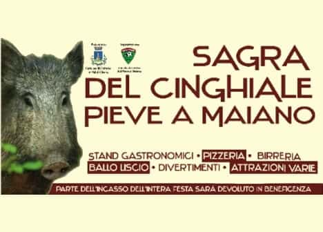 Photo di Sagra del Cinghiale