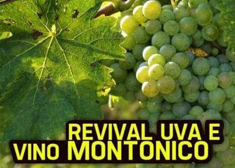 Photo di Revival dell'Uva e Vino Montonico